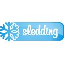 sledding button noel