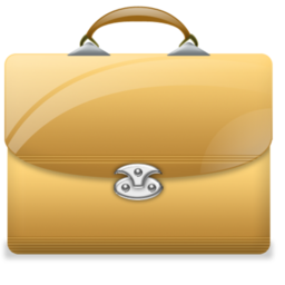 briefcase2 valise