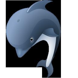dolphin dauphin