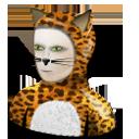 cat costume chat