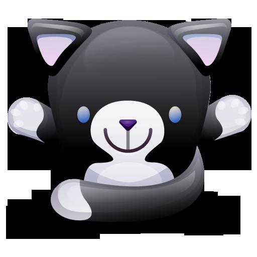 cat black white chat