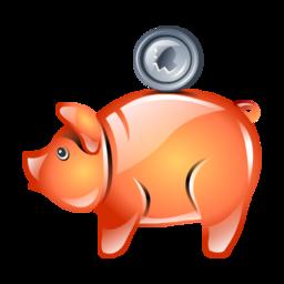 piggy bank cochon