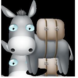 donkey ane