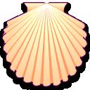 patinopecten caurinus coquillages