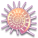stellaria solaris coquillages