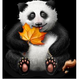 gift 12 panda