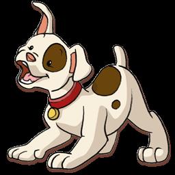 dog chien