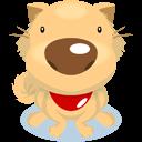 dog 1 chien