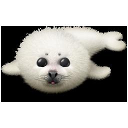 Icones Bebe phoque, images Bebe phoque png et ico Panda 500