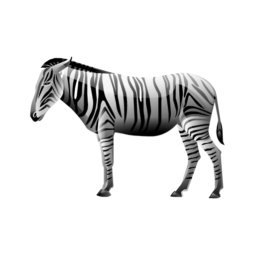 briliant animaux zebra2 zebre