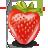 fruit 1 fraise