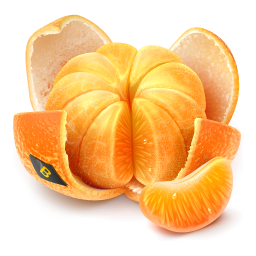 gift 3 clementine