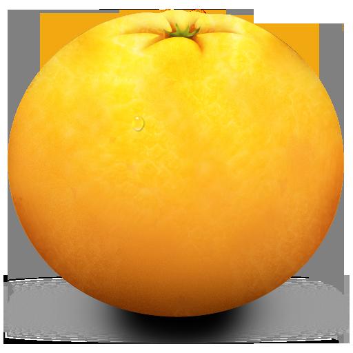 orange512 orange