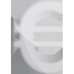 euro silver euro