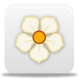 magnolia carre