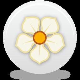magnolia256 rond