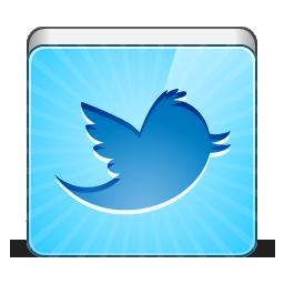 social twitter bird
