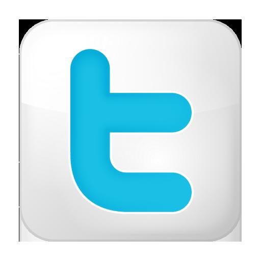 social twitter box white