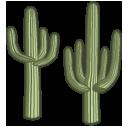 cactus saguaro