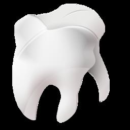 odontology 1