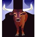bull longhorn