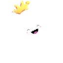 jelly fish q