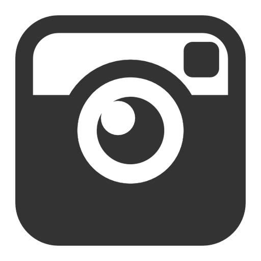 icones instagram  images instagram png et ico Social Media Icons Vector Social Media Icons