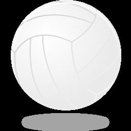 volleyball256