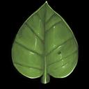 buff leaf