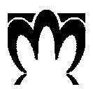 messenger miranda