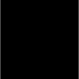 kayak symbol