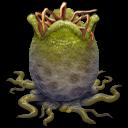 world of aqua 4 alien egg open