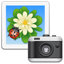 picture camera appareil photo
