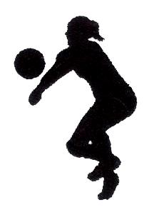 volleyball sport 7
