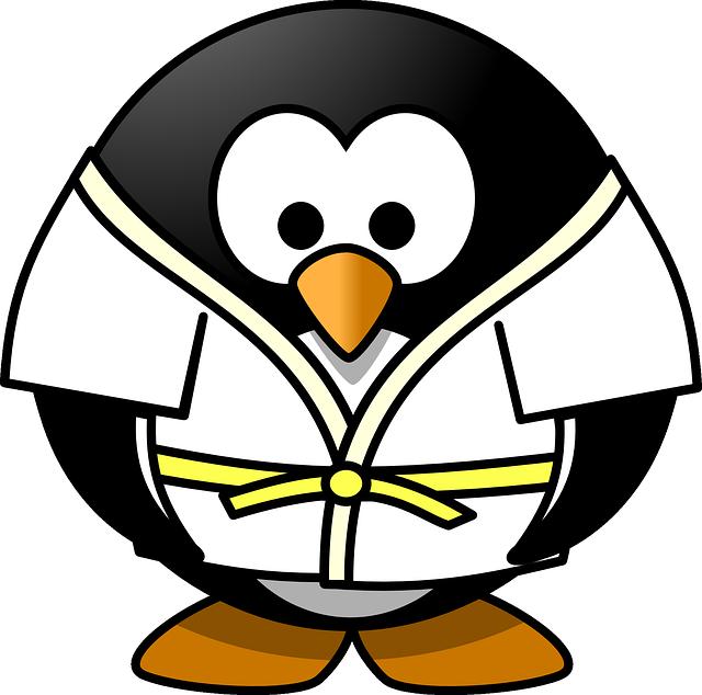 judo sport combat 3