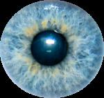 oeil vue regard 7