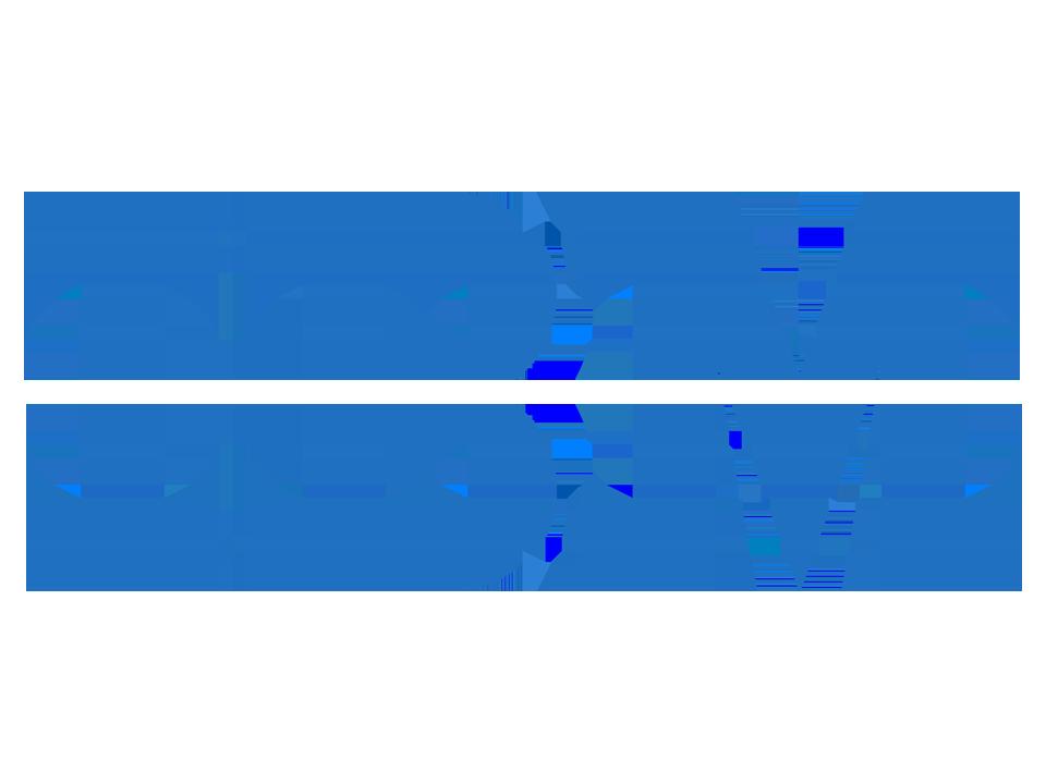ibm logo 6