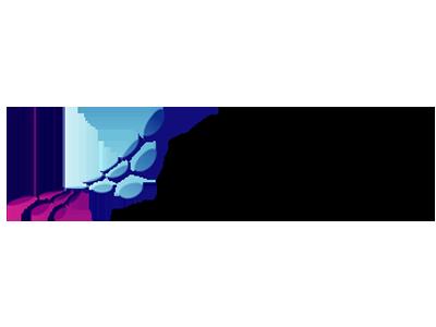 msdn microsoft 2