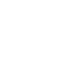 bateau transport ferry 11