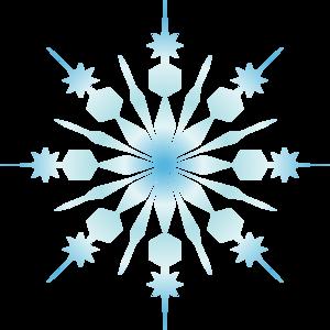snowfakes flocon neige 11