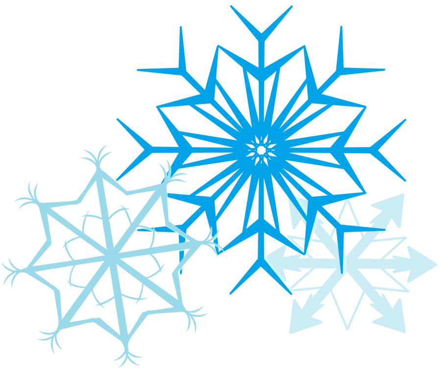 snowfakes flocon neige 12