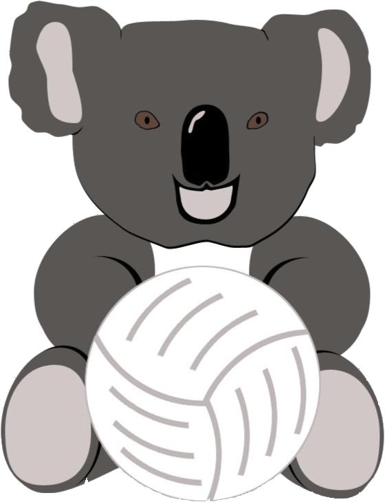 koala 07