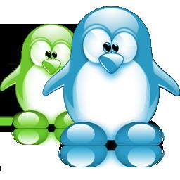 pingouin 11
