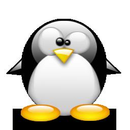 pingouin 15