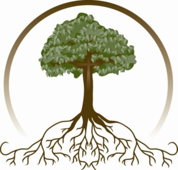 genealogie descendance 01