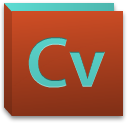 cv curriculum vitae 06