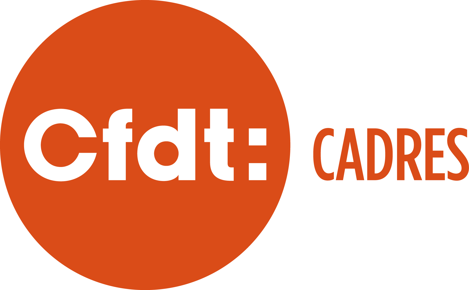 cfdt syndicat logo 03