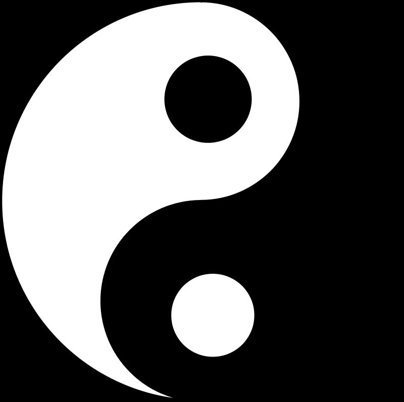 tai chu dualite yin yang 5
