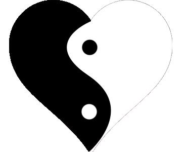 tai chu yin yang 16