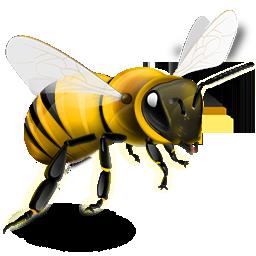 abeille 32